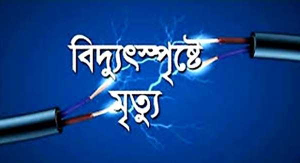 সোনারগাঁয়ের জামপুর পাকুন্ডায় বিদ্যুৎ পৃষ্ট হয়ে নিরাপত্তা প্রহরীর মৃত্যু