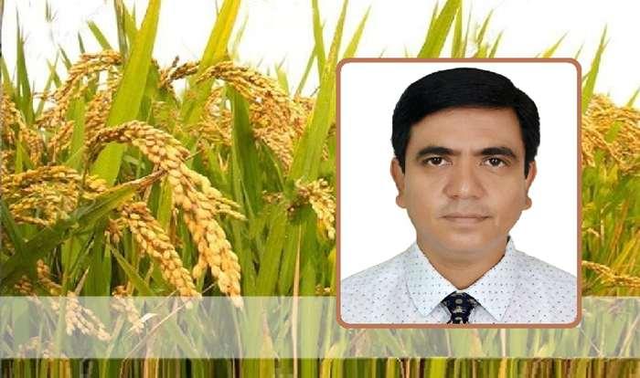 মো. কামরুল আহসান তালুকদার পিএএ