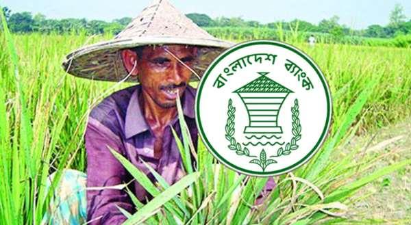 করোনায় কৃষকদের সুখবর দিল বাংলাদেশ ব্যাংক