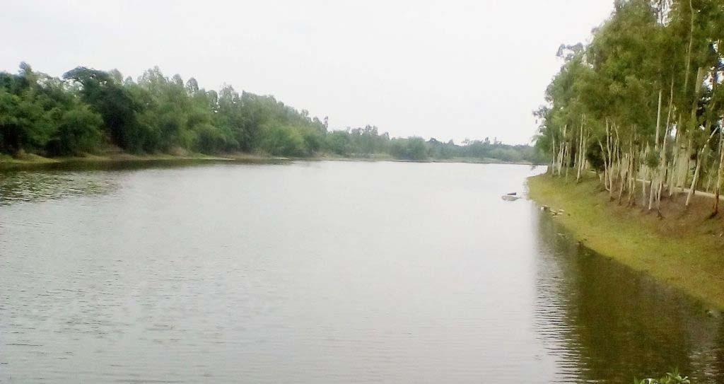 কুড়িগ্রাম জেলার ফুলবাড়ীর ছড়া থেকে ''ফুলসাগর লেক''