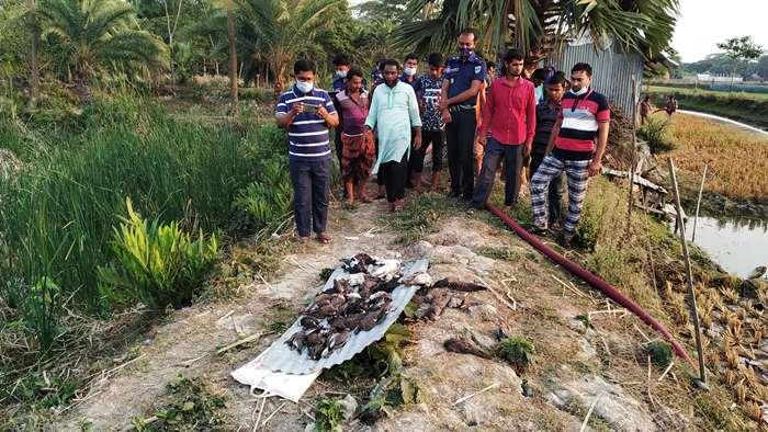 মোরেলগঞ্জে মুক্তিযোদ্ধাকে কুপিয়ে গুরুতর আহত করেছে দুর্বৃত্তরা